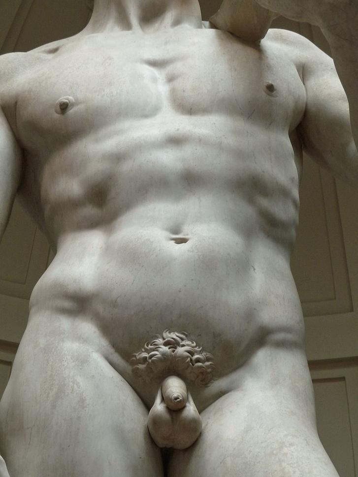 a pénisz izom vagy sem erős potencia és merevedés