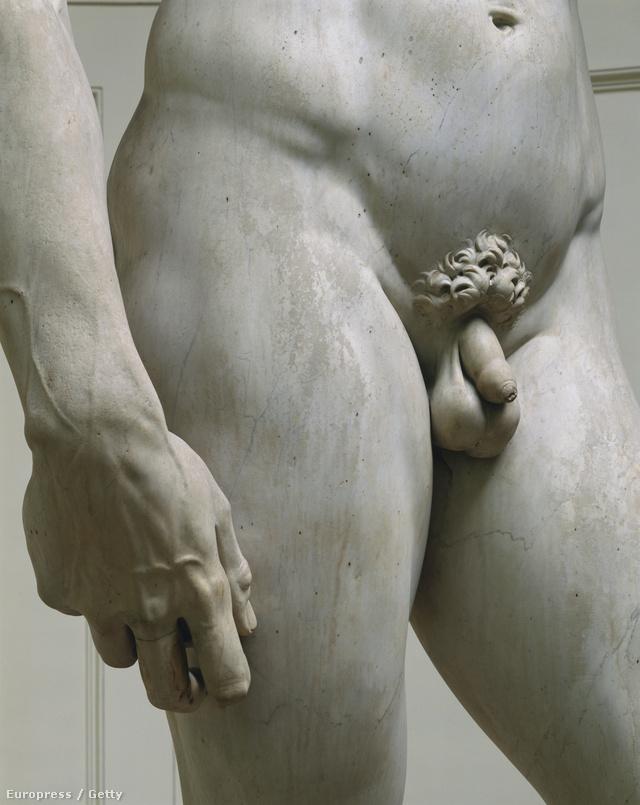 a legnagyobb és a legkisebb pénisz