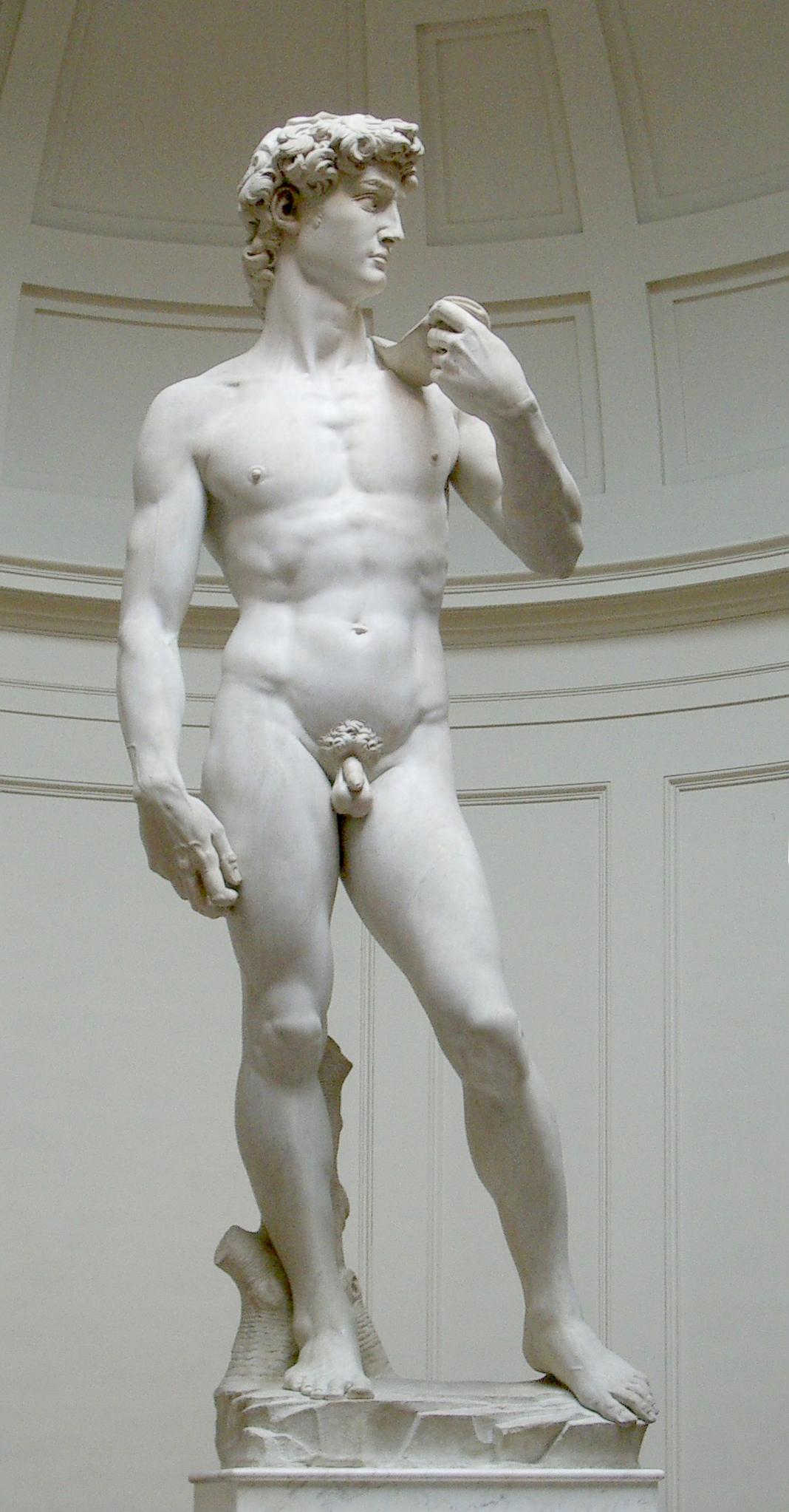 pénisz férfiak leírásában