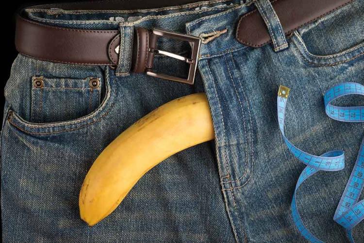 a pénisz mérete felálló állapotban