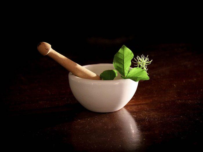 milyen gyógynövények jóak az erekcióhoz