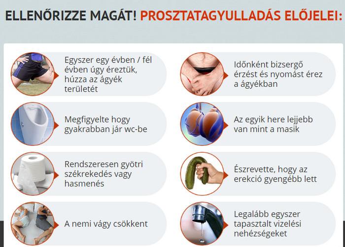 Milyen a jó erekció? - Hírek - kisvarosiismerkedes.hu