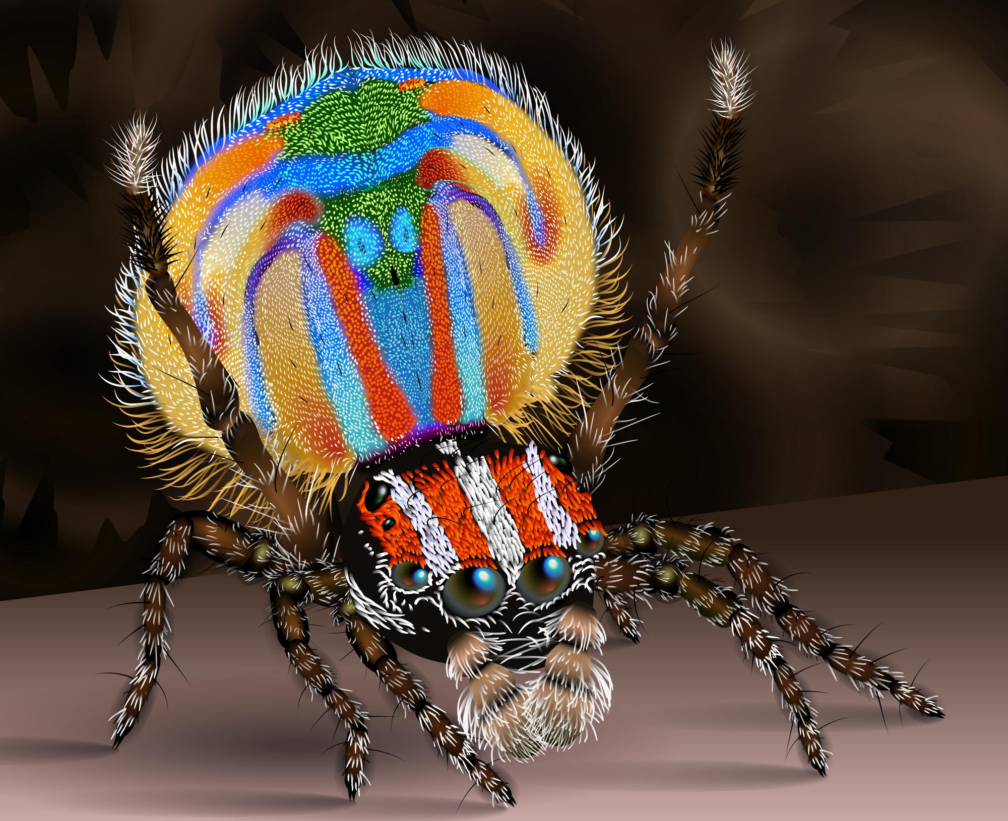 Az egri szakértő elárulta melyik póktól meneküljön, ha meglátja a gyümölcsök között